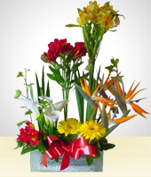 Alstroemerias - Beautiful Glass Bowl Flower Arrangement