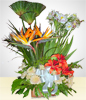 Condolence Arrangement with Alstroemerias and Crysanthemum