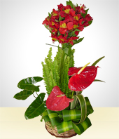 Alstroemerias - Bright and Cheery Anturios Bouquet