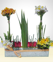 Alstroemerias - Spring Arrangement with Marble