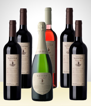 6  wine bottles set - Gascon (origin: Argentina)