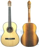 Professional Guitar - Naranjillo wood