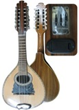 ElectroAcoustic Professional Mandolin - Nogal wood
