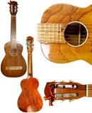 Traveler Guitar - Cedar Wood