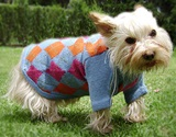 &#34Little bue sky&#34 dog sweater