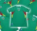 12 BOLIVIA NATIONAL TEAM Jerseys for a Soccer Team