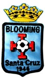 Patch &#39&#39Blooming&#39&#39